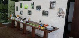 Galerie Foto Pensiunea Davideea 10